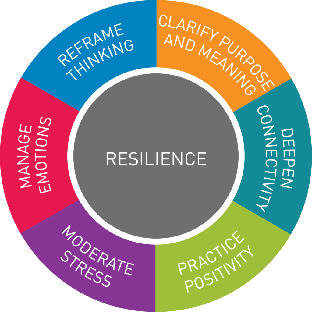 resilience_diagram_enlarged_text-1024x1024