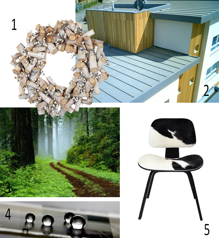 2014_04_Winter Picks_Frosted Birch Wreath John Lewis,  SINGLE PLY PVC ROOF Bauder Thermofol U, PRINT Darrell Gulin Unpaved Road in Redwoods Forest Art.co.uk, WATER AND DIRT REPELLENT  NP Liquid Glass,  Eames Moulded Plywood DCW Chair Pony Hide CA Design.